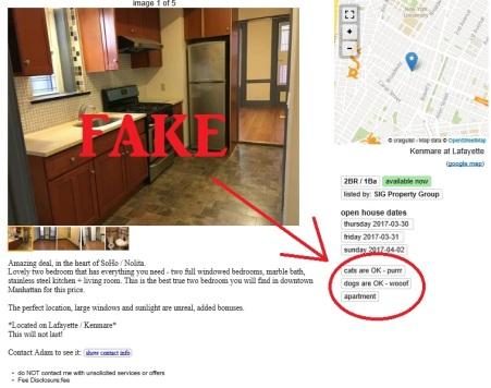 fake ad