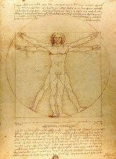 800px-Da_Vinci_Vitruve_Luc_Viatour_(cropped)