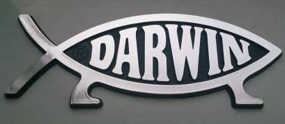 darwin-778446